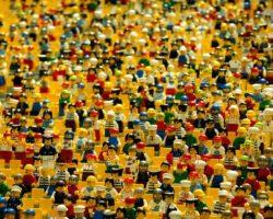Cultura ed elaborazione politica: e'ancora un binomio attuale?