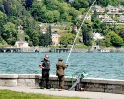 Diritto di pesca a Como